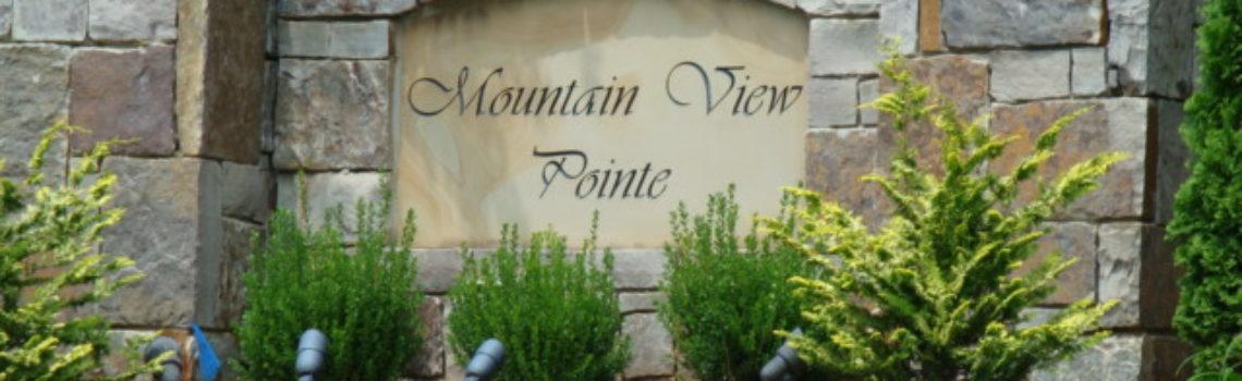 Mountain View Pointe