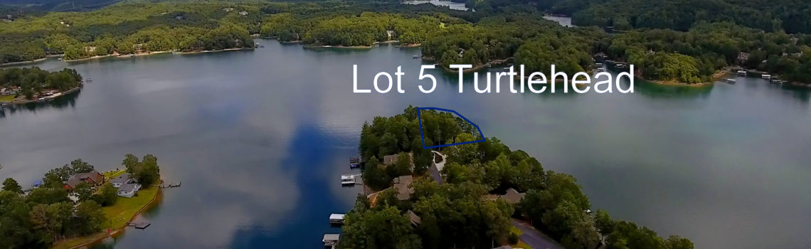 Lot 5 Turtlehead