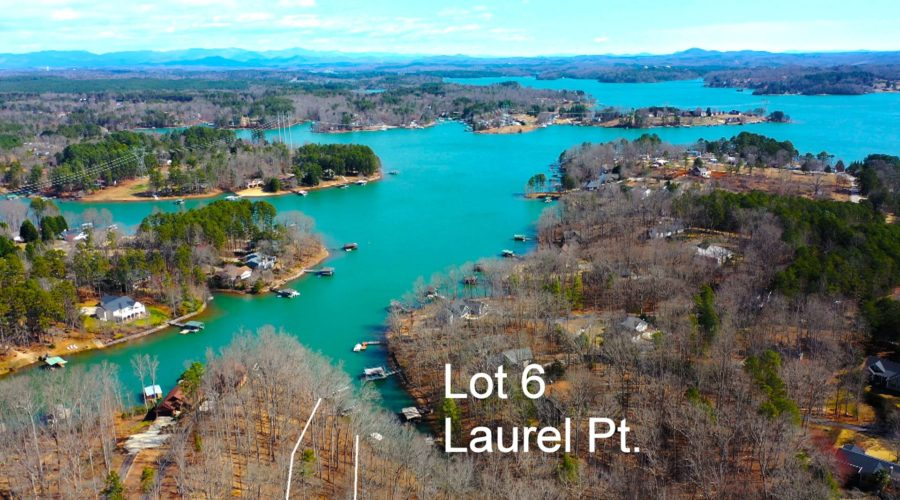 Keowee Expert Blog Pandemic Blues